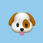 deleted_1583724901_Puppystyler