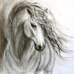 horseygirl Xx