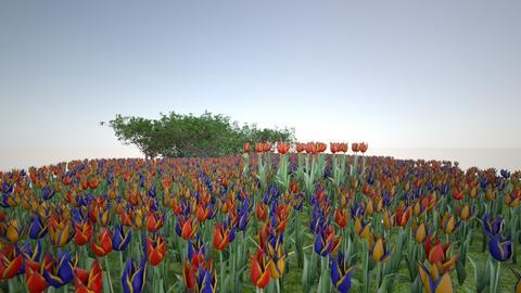 garden oli - Garden  - by katetremblay
