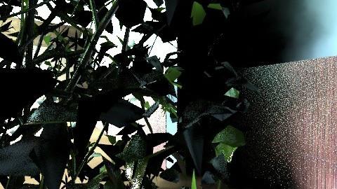 Garden design - Modern - Garden - by pippajlee