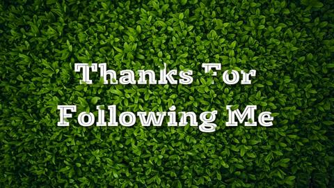 Thank You Following Me 80 - Eclectic - by MB2006