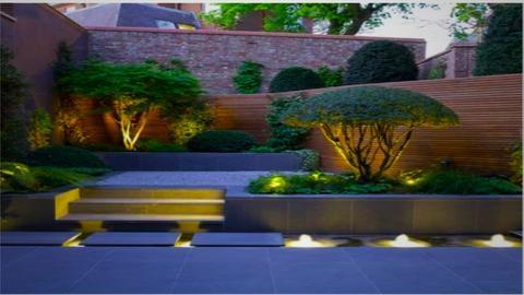 mordern garden - Modern - Garden  - by madaline