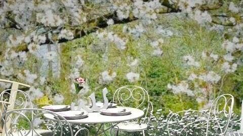 Spring - Classic - Garden  - by milyca8