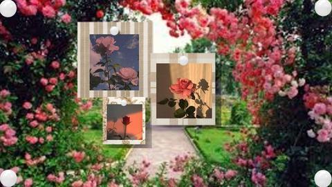 Rose moonboard - by ItsKalaniOfficial