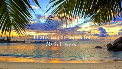 Thanks For 50 Followers - by Tanem_Cagla