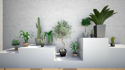 Little garden - Modern - Garden  - by Keliann