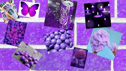 Purple - by Anvitha