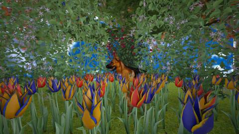 5 - Garden  - by abigailredon