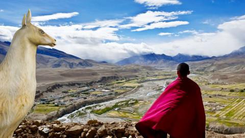 Tibet - Eclectic - Garden  - by Orionaute