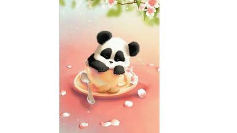 panda - by Hannah444