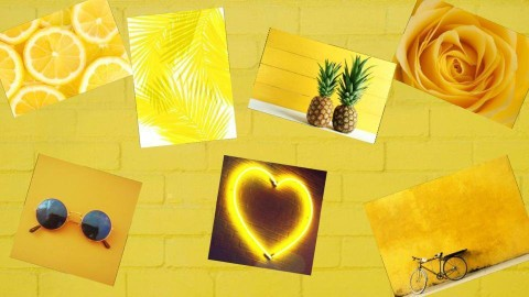 Yellow - by Anvitha