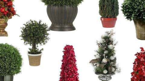Christmas decor-- topiaries  - by Mieke ten Have