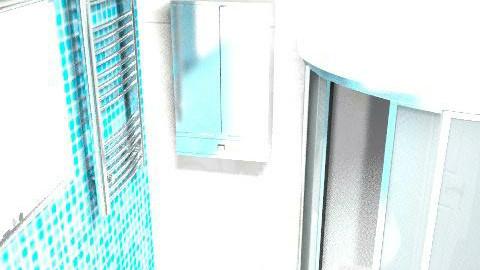 Bolotin\s bathroom - Glamour - Bathroom  - by maria0406