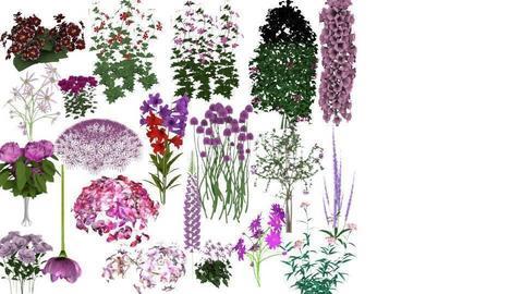 pink flowers - by RAWAN UNICORN