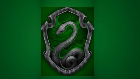 THATS RIGHT IM SLYTHERIN - by Tigerstar101