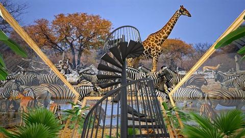 Safari view - by Linda50