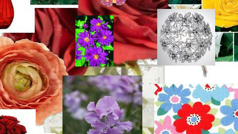 roses are red voilets are blue dont you see this awesome mood board - Feminine - Art - by anniebannanie