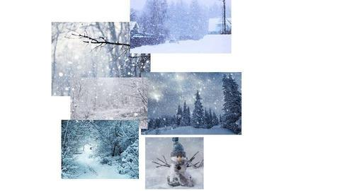 Snowy day pics - by Rose_Design
