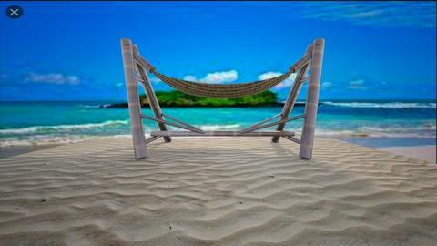 Beach Hammock - by Hamzah luvs cats