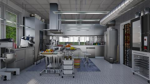 my restaurant kitchen - Modern - Kitchen  - by Ida Dzanovic