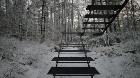 Stairs In The Woods 3 - by SammyJPili