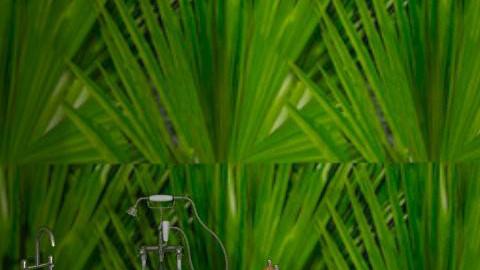 green leaf bathroom - Glamour - Bathroom  - by zuzu1232